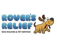 Rovers Relief Dog Walking Paisley