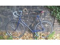 "XL (25"") Carbon-Frame Perfect-Order Single-Speed Trek 2100 Road Bike"