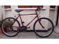 Raleigh nitro 15 speed bike