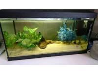 Tank Fish AQUAEL 56 L