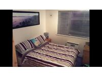 Double room to let - Wifi, bills included, use of house, close to hospital, town and other employers