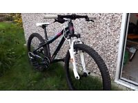 "Orbea childs mountain bike (9 to 12 yr old) excellent condition mx24xc. 24"" wheels."