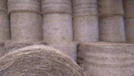 Hay, haylage & straw for sale