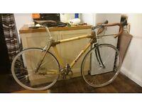 Bamboo Road Bike