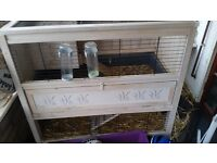 Beautifully 2 tier guinea pig/rabbit house