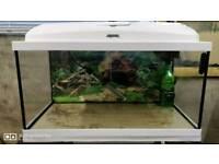Complete fish tank