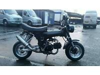 Honda dax copy custom build monkey bike