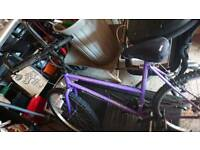 Ladies purple bike