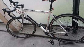Avenir Road Bike 56CM FRM 21GRS