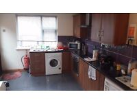 Spacious double room to let on Donnybrook Street, Belfast