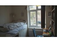Beautiful room to share 10 minutes away from UEA