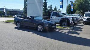 2013 Ford Mustang Premium Conv **REVERSE PARK ASSIST**