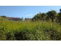 Grass cutting and garden clearance