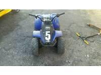 Meerkat 50cc quad.