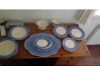 J&G Meakin Daisy Dinner Set 1910-1920