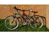 Raleigh AT20 ladies mountain bike