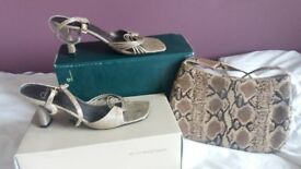 Faux Snakeskin Handbag and Shoes