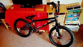BMX Brand New