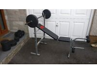 Weights Bench and Weights - Pro Power