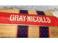 Gray nicolls JUNIOR / Cricket bat 5. Phoenix fire