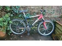 Diamondback mountain bike for repair