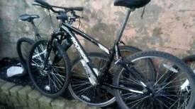 3 nice bikes. Gotta go. Bargain!!!!!