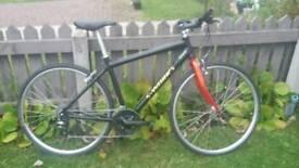 Giant road hybrid bike