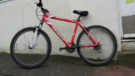 Specialized Rockhopper Mountain Bike - Fully Serviced - Faded Paintwork 19 inch Frame