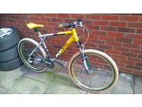 GT XTR Avalanche 0.5 Light Weight Mountain Bike Custom Built Fluid Brakes Carbon Fibre Large Size