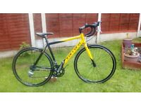Adult, alloy. Carrera TDF. Road/race bike. Serviced ready to ride.