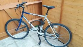 Men's Decathlon bicycle - £10