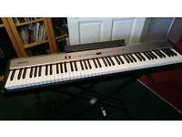 Roland FP-2 Digital Piano