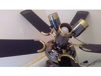 Ceiling fan and lights ideal for conservatory.