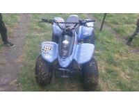 125cc auto quad with reverse