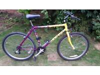 Raleigh Aztec mountain bike one of many quality bicycles for sale