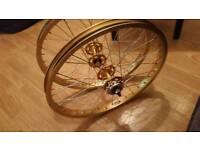 Gold araya wheels