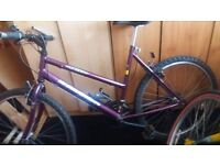 "Raleigh 15 ogre 16"" 15 gear ladies bike"