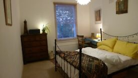 Lovely room to rent in Brixton - Monday to Friday only