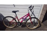 "Pro-Bike Mistrale Pink Girls Bike 14"" Frame"