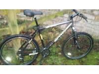 "Scott mountain bike 19"" frame"