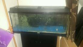 Juwel fish aquarium and stand