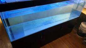 6ft fish tank and stand
