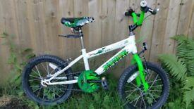 Children Raptor Bike