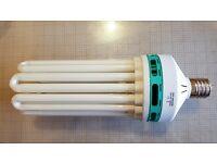 Hydroponic Dual Spectrum 250w CFL Light Bulb Growing & Flowering