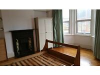 Large double room for single female in female house share 7 mintues walk from Turnpike Lane tube