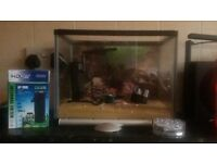 small fish tank set up