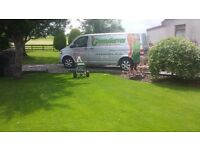 Garden scarifying /Grass / scarifier / lawn scarification/Lawn care/hollowtine aeration weed/moss