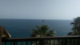 One bedroom apartment available for holiday rental in Tenerife from 19th May (2 adults only)