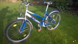 Girls' Bicycle (to suit 10 - 12 year old)
