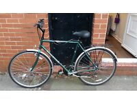 Raleigh Bicycle, great condition, new tyres, seat and brakes. Only used a few times.